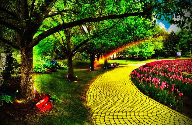 Yellow Brick Road by Kelly Ann T