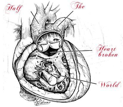 Half the Heartbroken World - The Best of Craigslist
