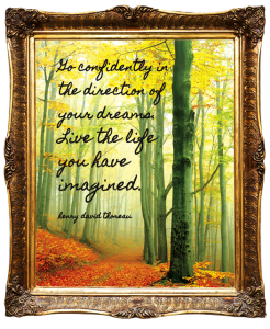Live the Live You Have Imagined