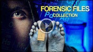 Netflix Forensic Crime Shows