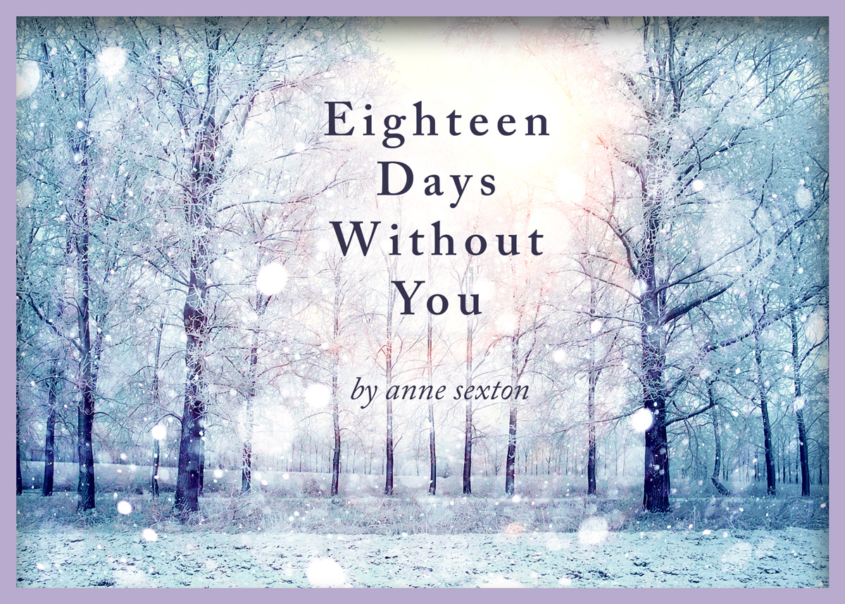 Eighteen Days Without You full poem by Anne Sexton