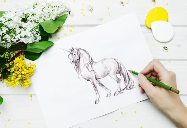 The Accidental Unicorn: How I became a designer who loves to code