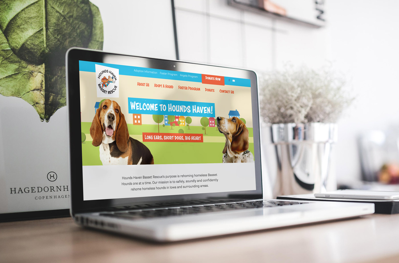 Hounds Haven Basset Rescue