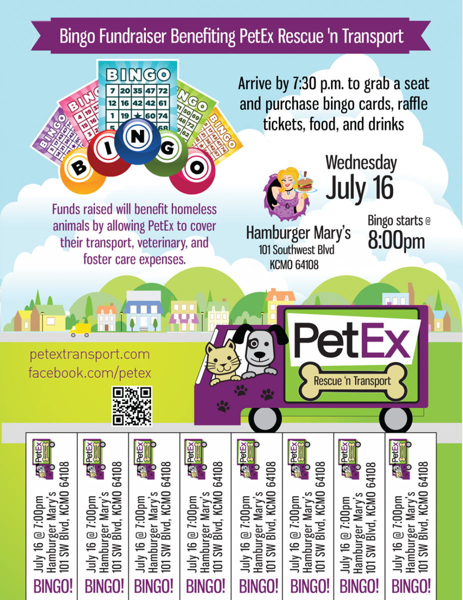 PetEx Bingo Flyer Non Profit