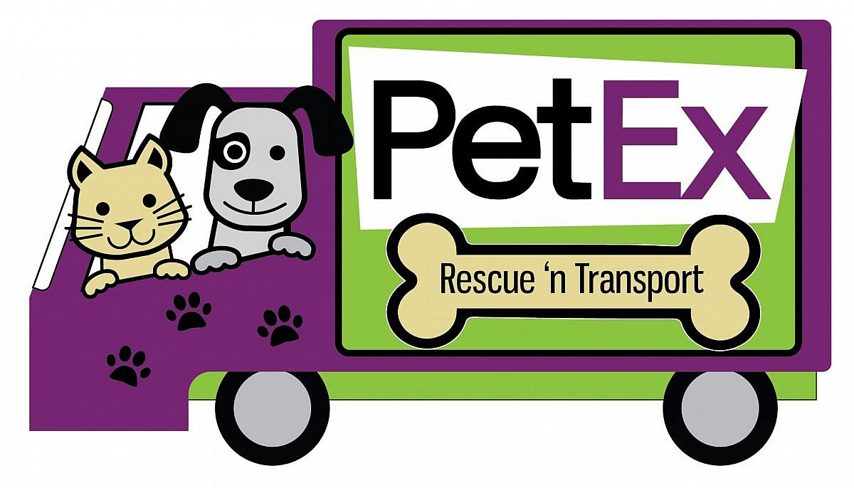 PetEx Rescue 'n transport logo design